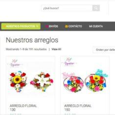 tienda-online-pagos-ecuador